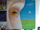 Das buddhistische Auge